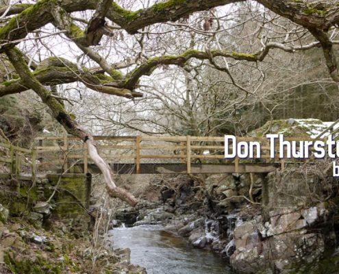 Don Thurston Blog